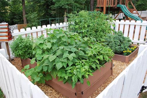 10 consejos para que su jard n org nico crezca bien for Jardin organico