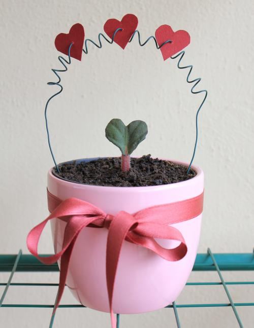 "5 ideas ""verdes"" para regalar en San Valentín"