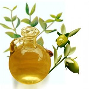 aceite-de-jojoba-beneficios-y-propiedades_zt4x8