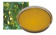 aceite-de-neem-que-es-y-para-que-sirve_0hao3