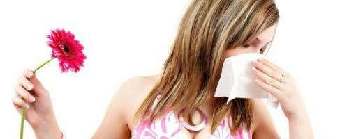 antihistaminicos-naturales-10-remedios-contra-las-alergias_64ijw