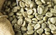 cafe-verde-ayuda-a-combatir-la-diabetes_s753b