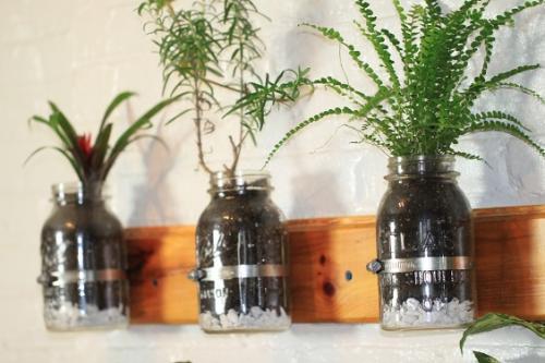 Cómo construir un mini-jardín con frascos de vidrio en 10 pasos