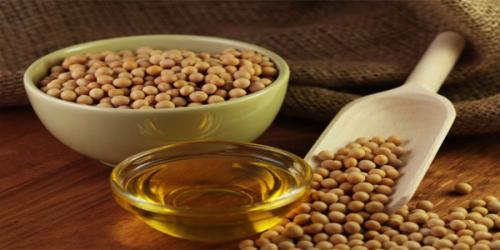 el-aceite-de-soja-y-sus-maravilloso-beneficios_mrn2u