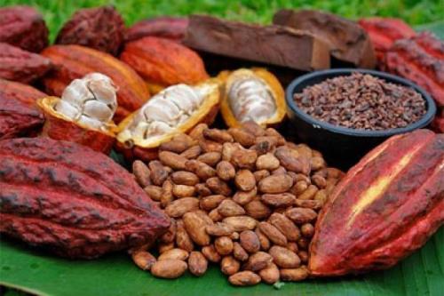 Esbelta y feliz gracias al cacao