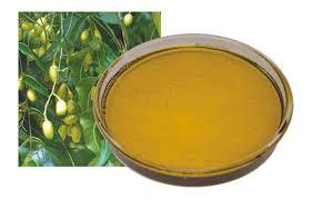 Herpes labial: el aceite de Neem puede ayudar