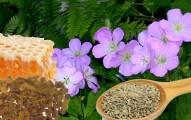 remedios-naturales-contra-la-acidez-y-el-ardor-estomacal_oyuew