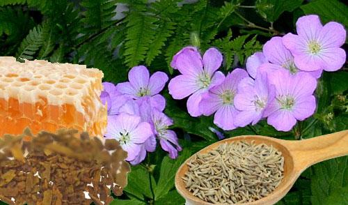 Remedios naturales contra la acidez y el ardor estomacal