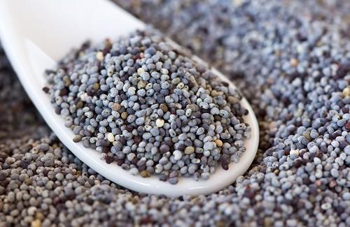 Semillas de amapola: sus usos y   propiedades