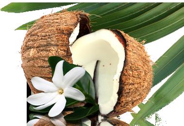 Tamanu, Noni y Monoï, las plantas de Tahití para la salud y la belleza