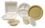 vajilla-de-plastico-atencion-con-la-comida-caliente_sa8nw